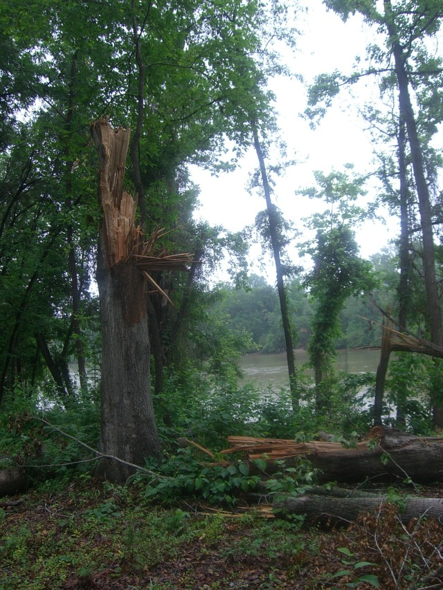 tornado damage in rock hill, south carolina
